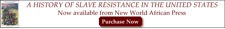 Buy Now: A History of Slave Resistance in the United States